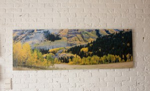 Maroon Creek valley, près d'Aspen, CO - Tirage direct sur Dibond (150x50 cm)