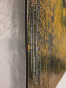 Maroon Creek valley, près d'Aspen, CO - Bord du tirage direct sur Dibond